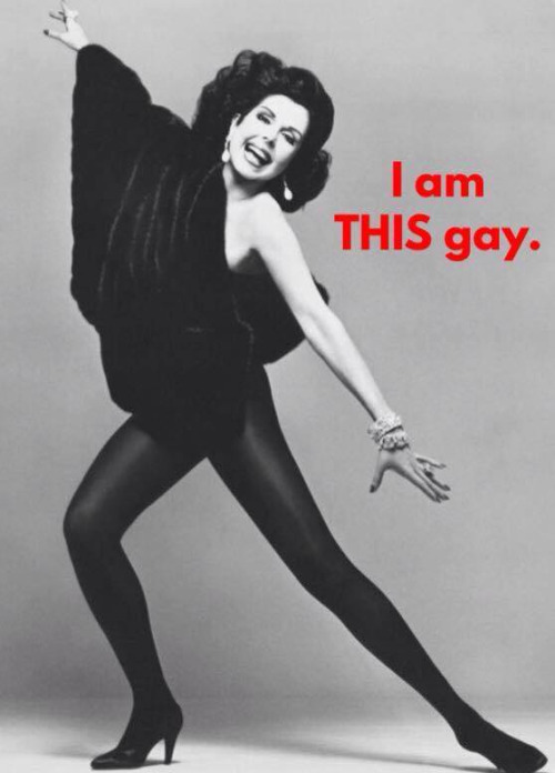 I am THISgay