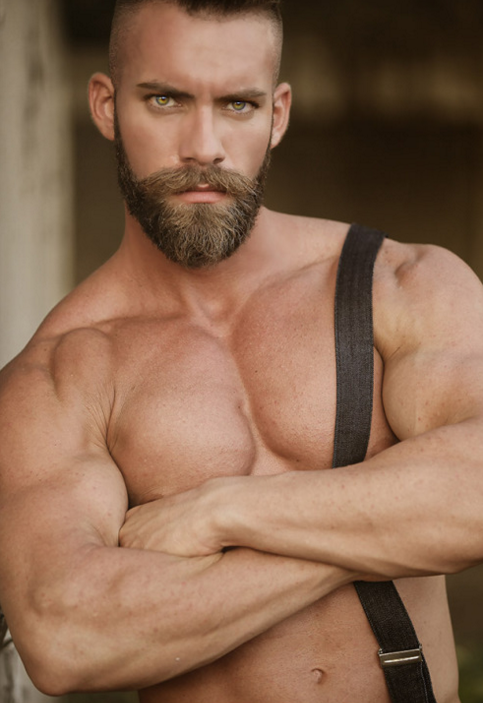 Gratuitous Shirtless Bearded Model