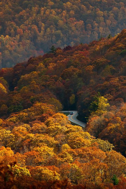Autumn up in themountains