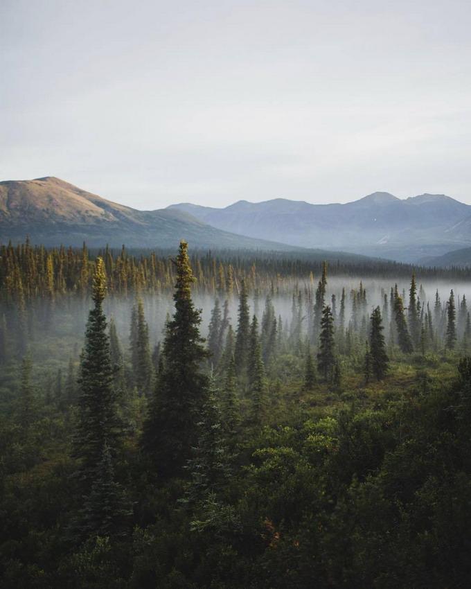 Misty valley, Photo by JohnWingfield