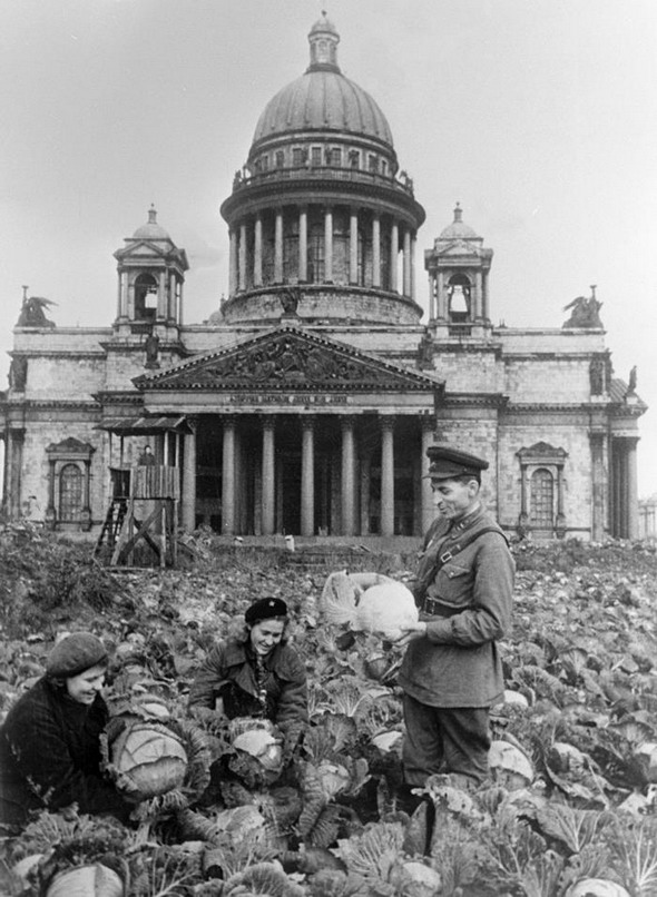 Russians growing cabbages in downtown St. Petersburg/Leningrad during the Nazi siege of the city
