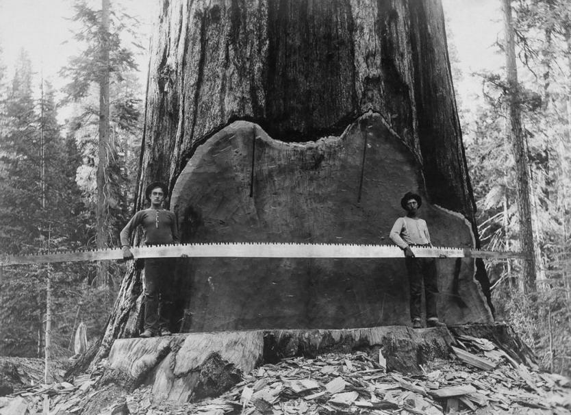 Vintage Lumberjacks
