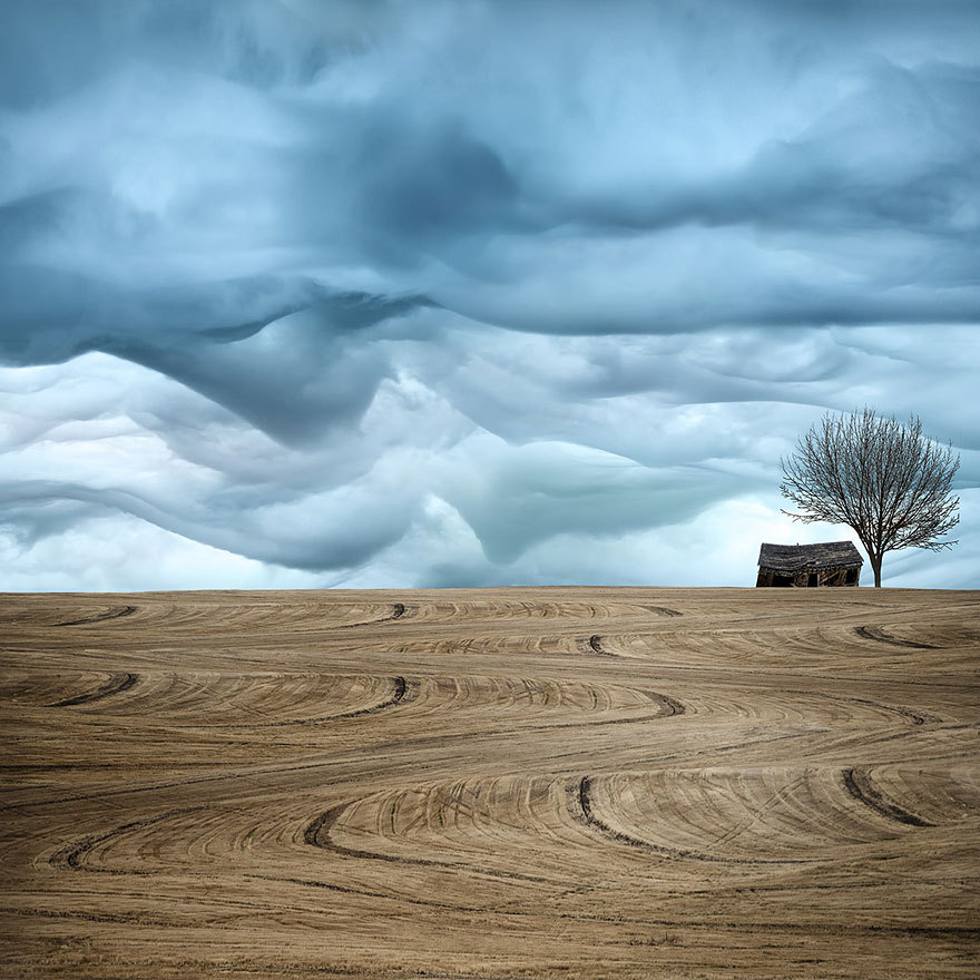 Landscape photo by Lisa Wood