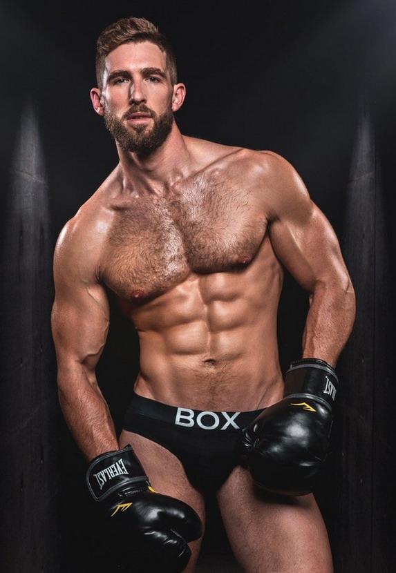 Boxer model