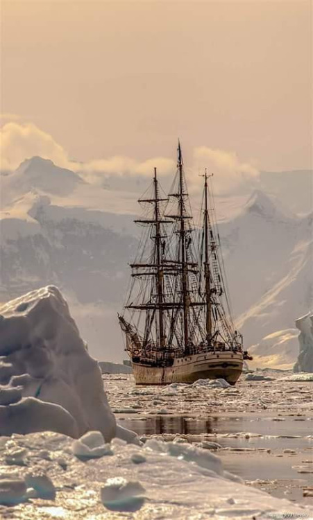 Sailing vessel in icy waters