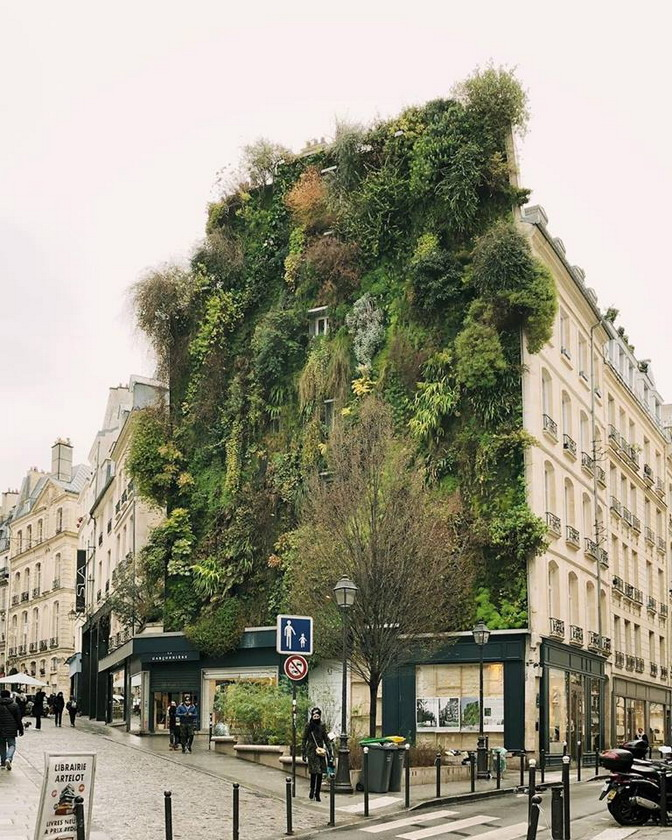 Vertical landscaping, Paris