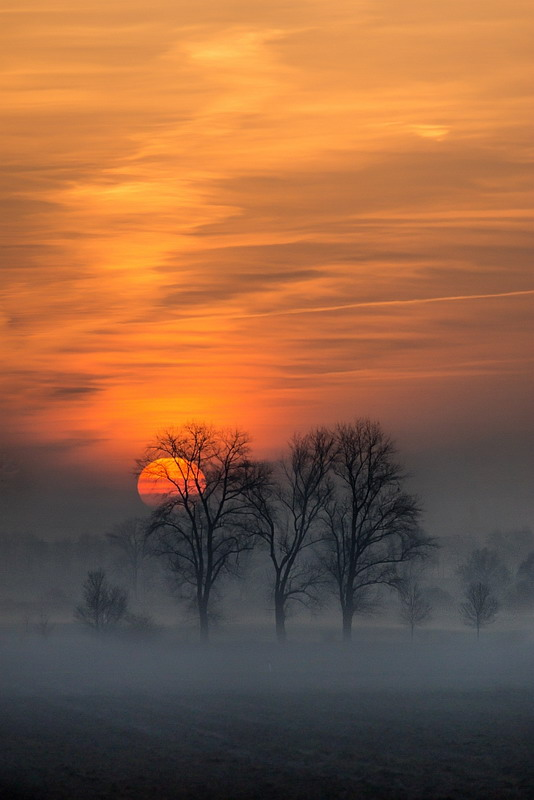 Misty late winter sunset