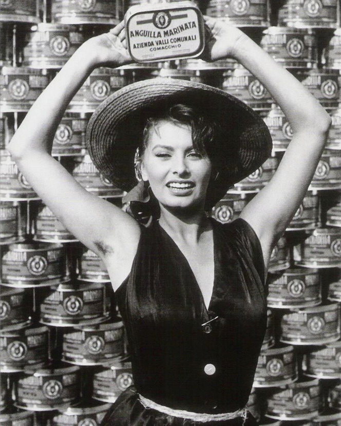 Sophia Loren advertising anchovies
