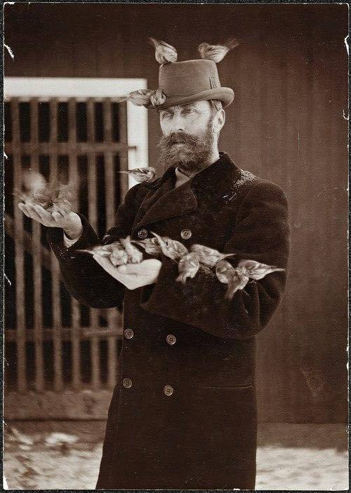 Vintage man withbirds