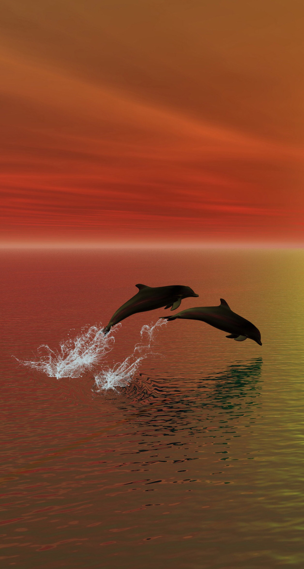 Dolphins (or are theyporpoises?)
