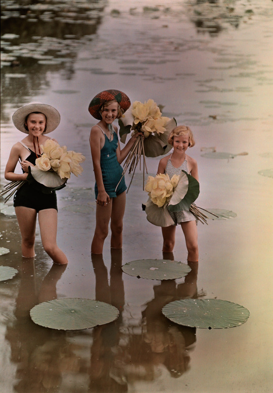 Collecting water flowers, Iowa, 1930s