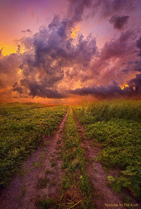 Sunset in Wisconsin, photo by Phil Koch