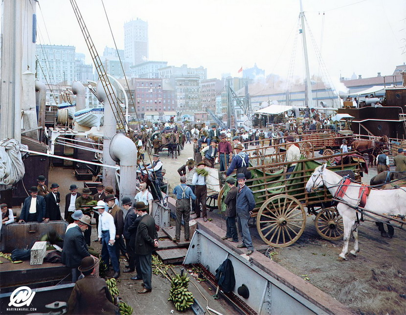 Very well colourized photo of the unloading of a banana boat in NYC, circa 1905