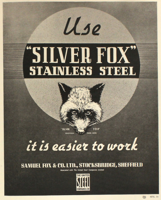 Silver Fox Stainless Steel