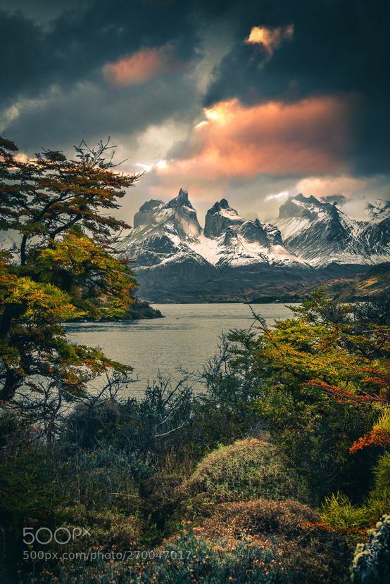 Patagonia, Argentina/Chile