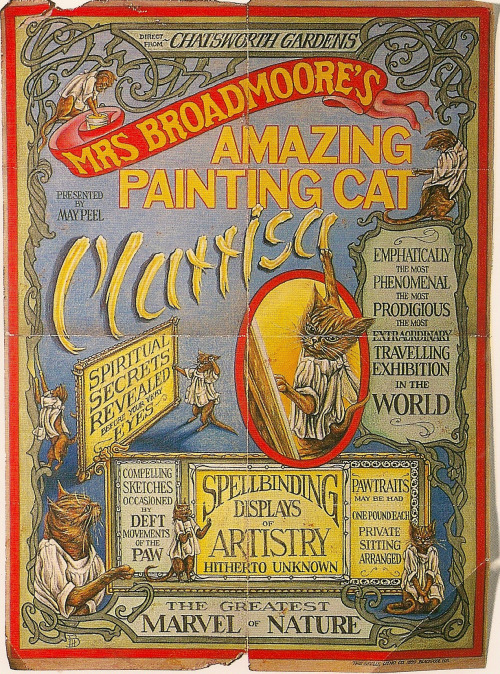 The Amazing Painting Cat