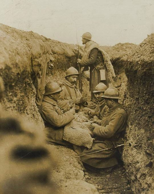 German soldiers playing cards in the trenches, WWI