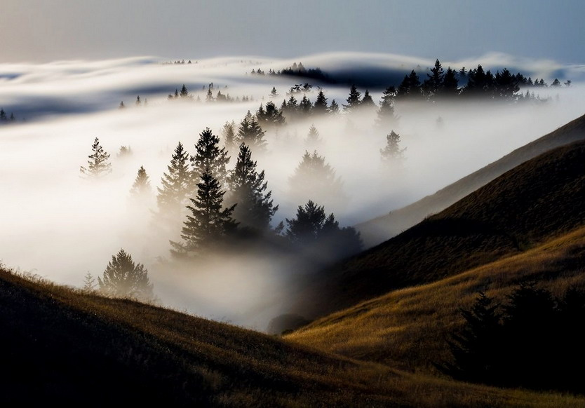 Fog rolling around in a valley north of San Francisco