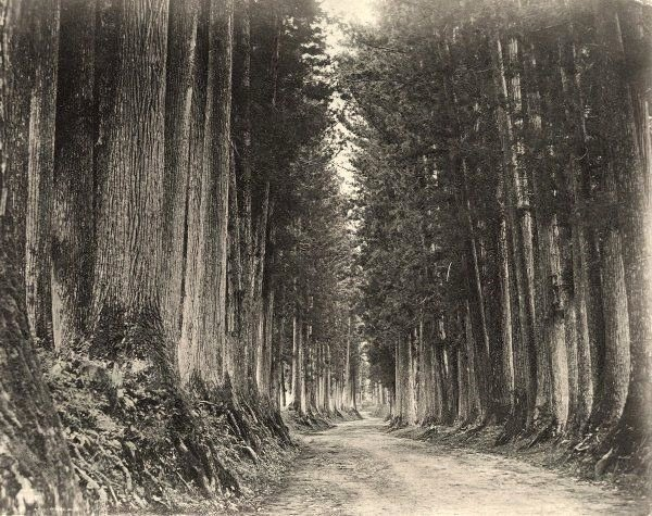 Road to the North, Japan, 1800s