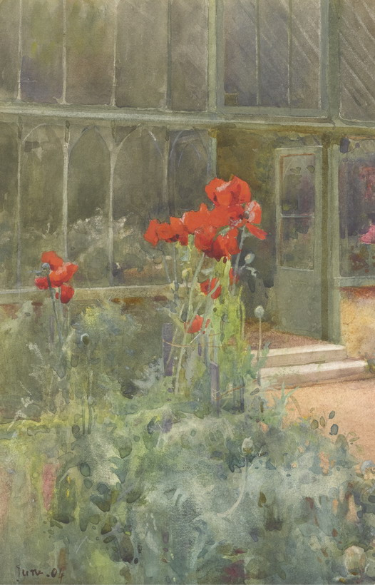 Poppies outside a greenhouse – painting by Mildred Anne Butler