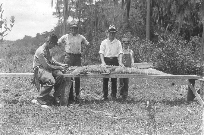 Vintage Florida GatorHuntin'