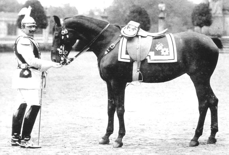 Kaiser Wilhelm II and a horse