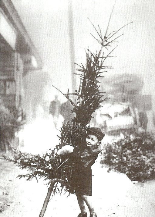 Boy with a Christmastree