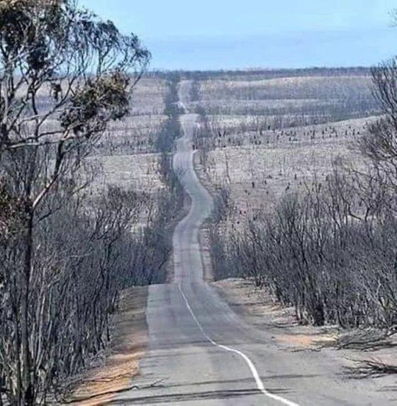 AUSTRALIAN FIRES 7