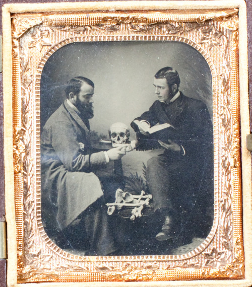 Two doctors conferring over a pile ofbones