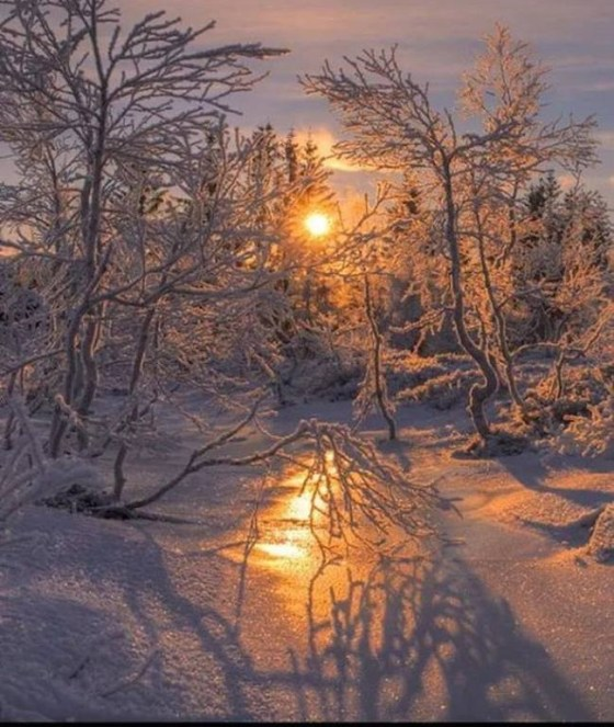 snow and sun 39