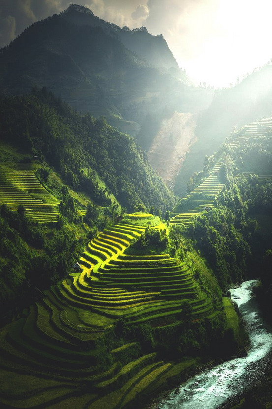 Terraced valley, Vietnam