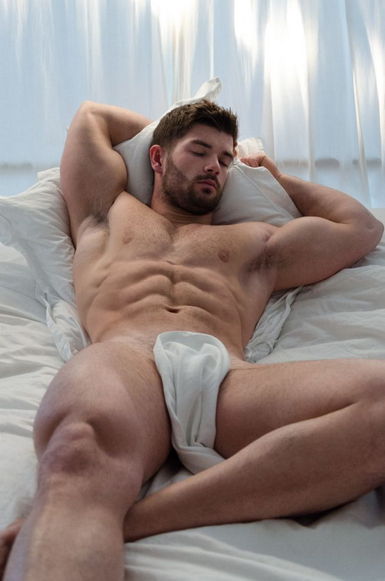 BED 646