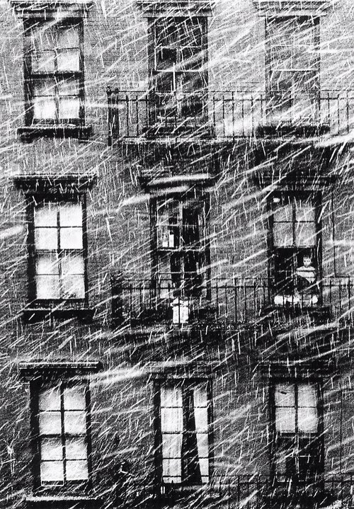 Snow in thecity