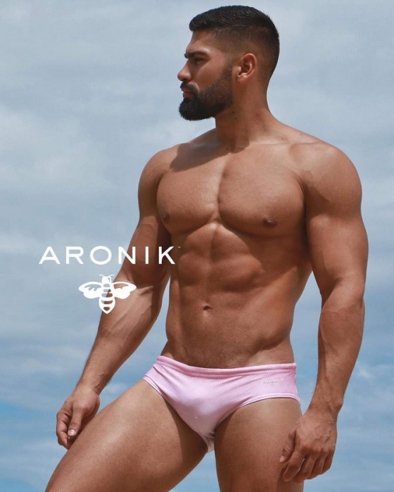 ARONIK 91280