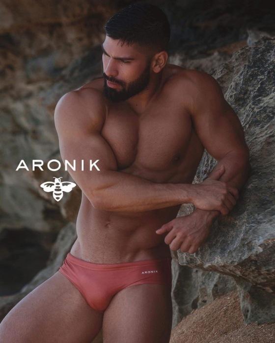 ARONIK 91281