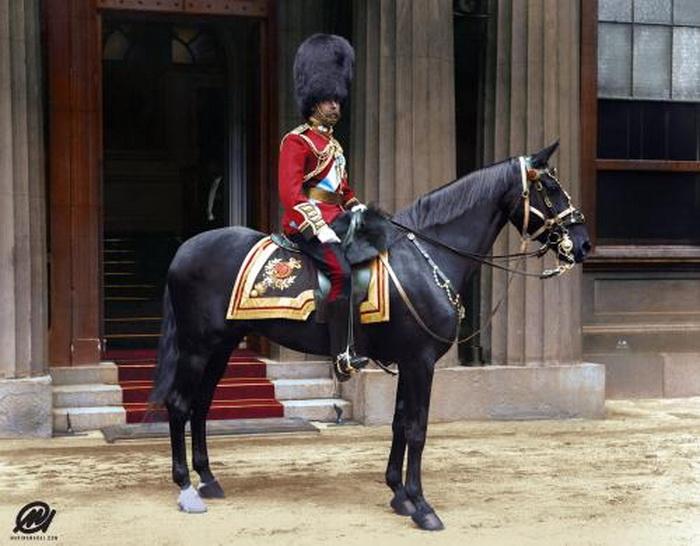 King George V on ahorse