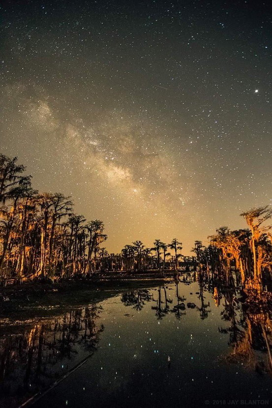 Starry evening over a swamp in Georgia (USA)