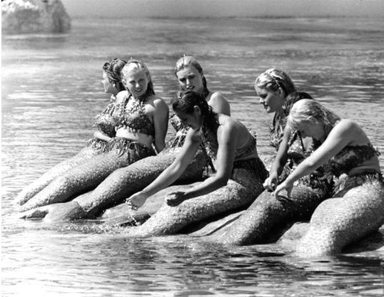 Mermaids, Disneyland, California