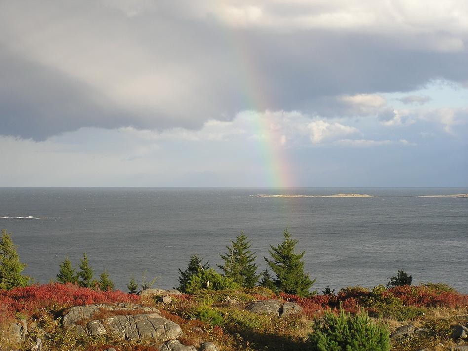 Photo I took, from Maine looking towards NovaScotia