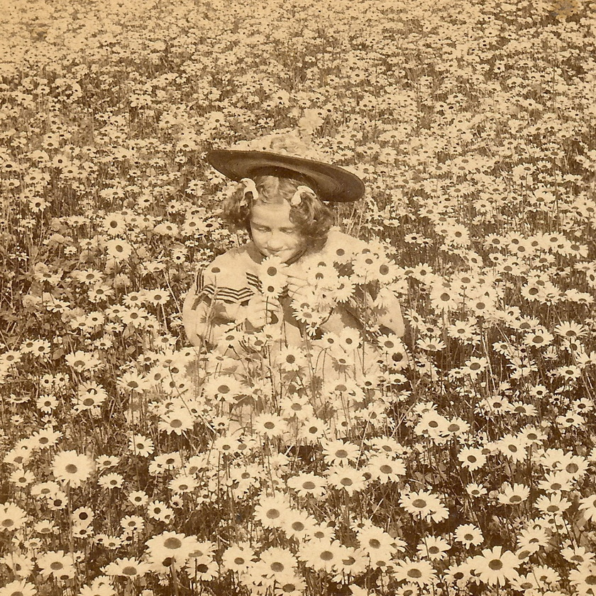 Stopping to smell thedaisies