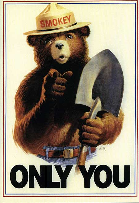 Only you can prevent forestfires