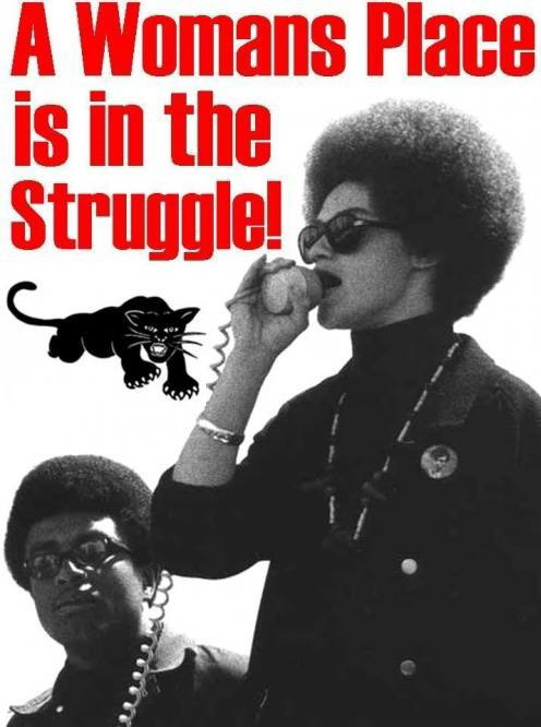 black panthers 5