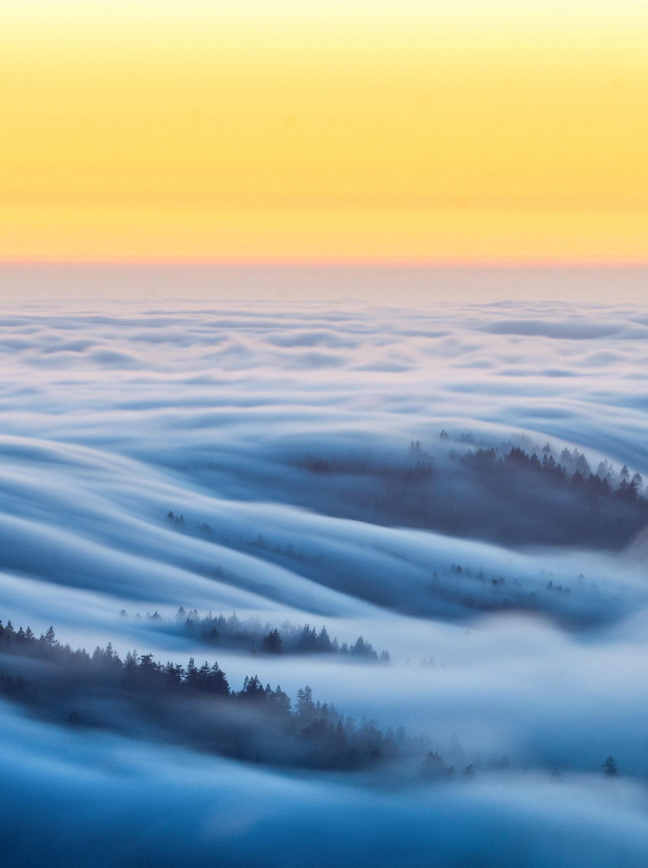 Fog in northernCalifornia