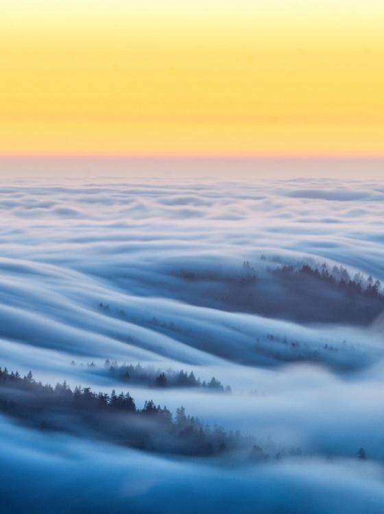 fog california 2