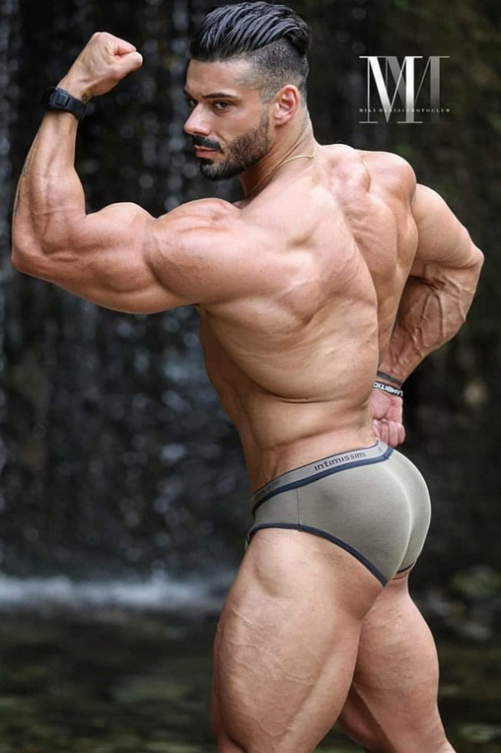 MUSCLE 657700015