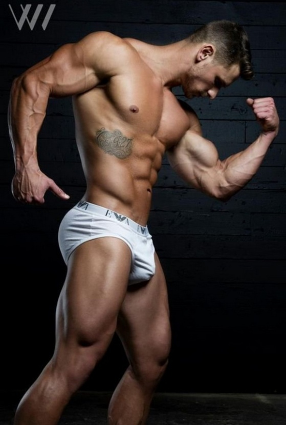 MUSCLE 56870001