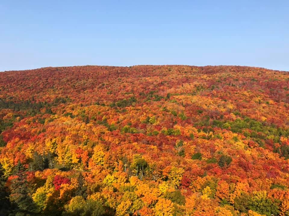 Autumn foliage in Minnesota this week, photo by KateStenzel