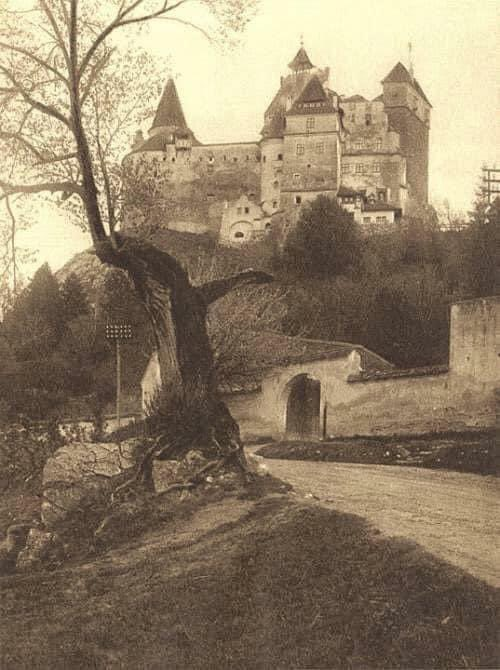 Count Dracula's castle,Transylvania