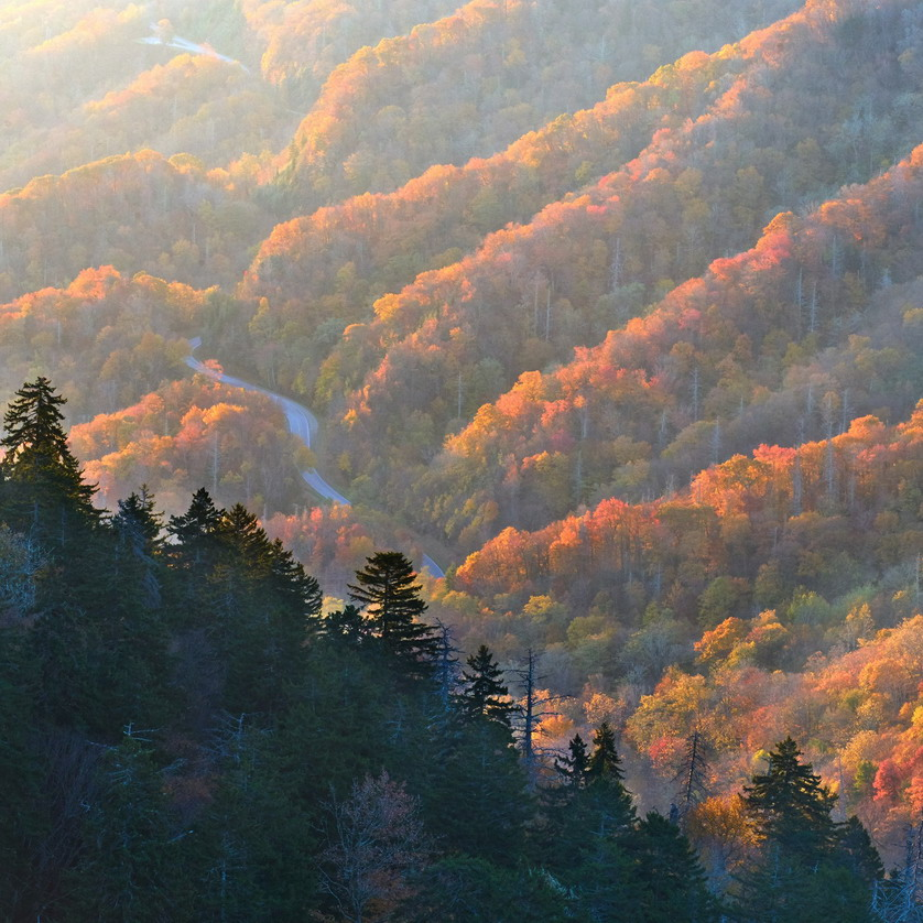 Autumn in the Great Smoky Mountains, photo by Daniel Ewert