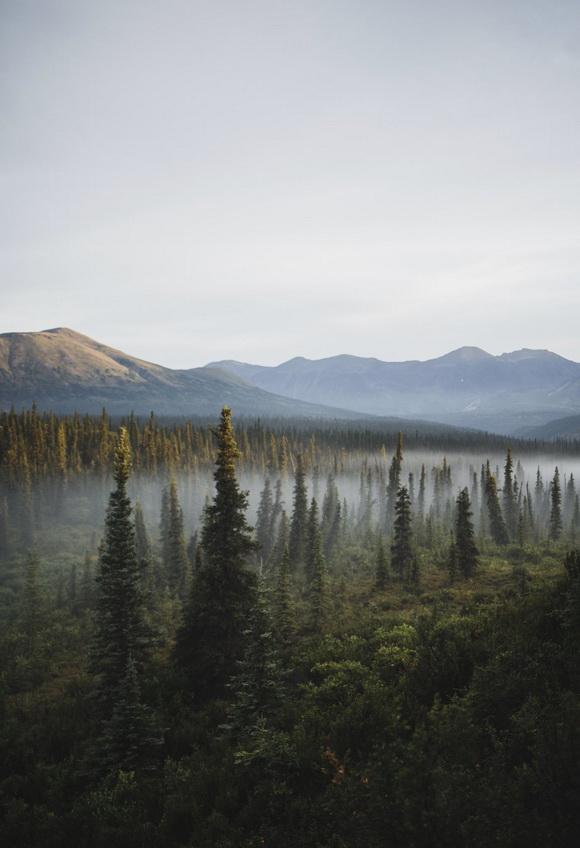 Misty Siberia